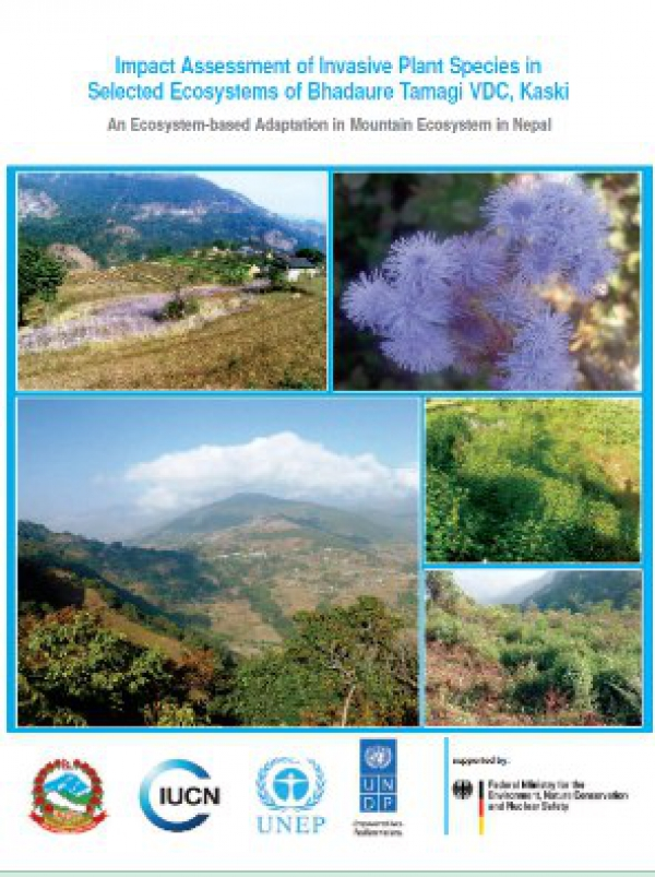 Impact Assessment of Invasive Plant Species in Selected Ecosystem of Panchase