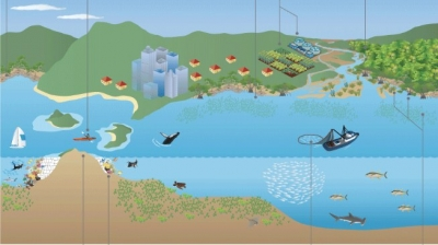 "Diagramme from UNEP, ""Taking Steps Toward Marine & Coastal Ecosystem-based Management - An Introductory Guide"""